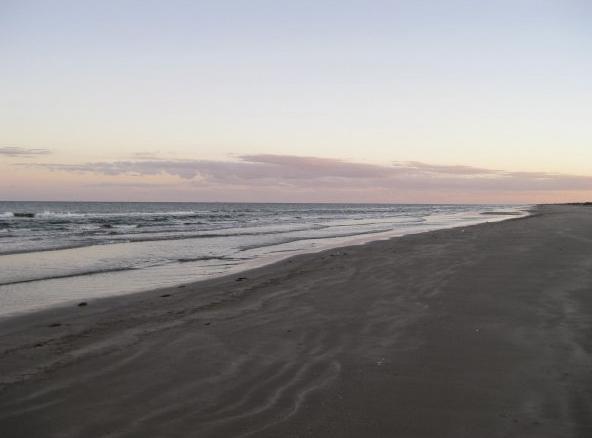 South Beach SPI