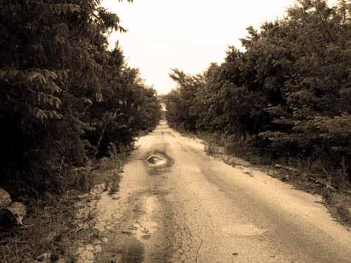 overgrown_screaming_bridge_abandon_road