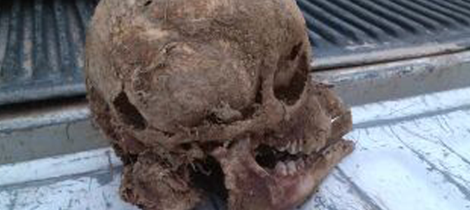 Bizarre skull found on South Texas ranch