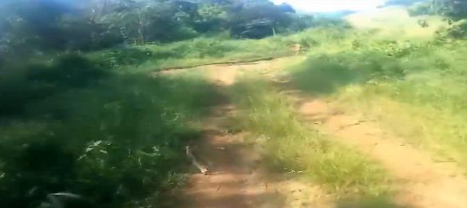 Bikers come across running humanoid