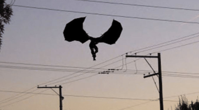Man morphs into giant bat-like creature near flea market – Brownsville, Texas
